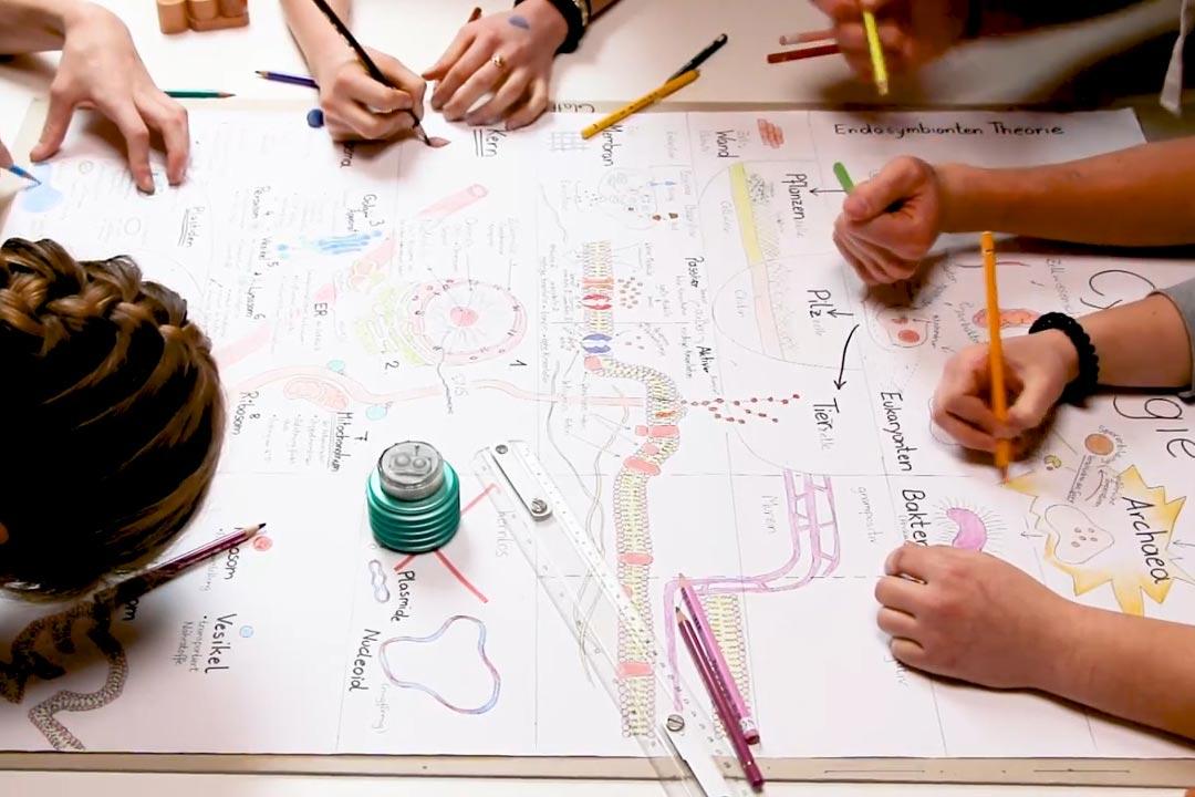 Weinbergschule | Schaubildarbeit